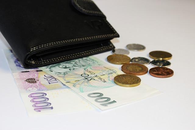 kožená peněženka a mince