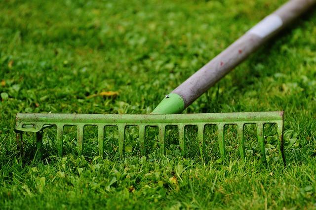 hrábě na trávě