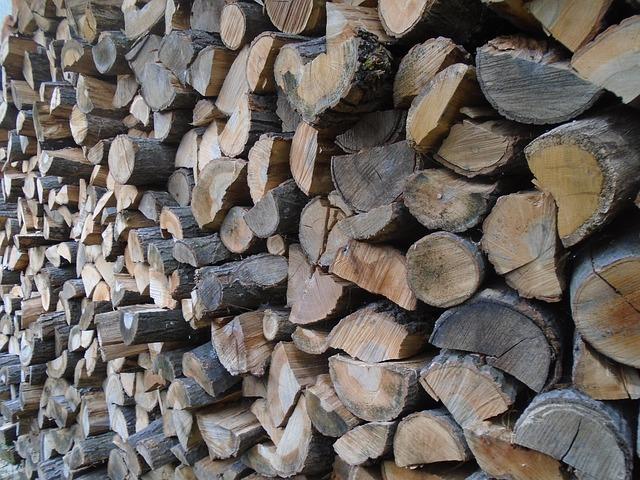 hromada dřeva.jpg
