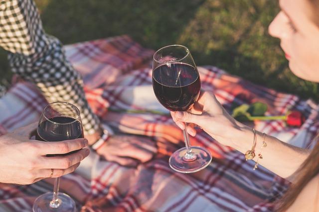 Pár sedící na piknikové dece, připíjející si červeným vínem