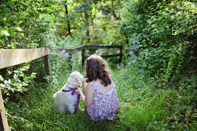 holčička otočená zády v lese, má u sebe štěňátko světlé barvy s fialovým vodítkem